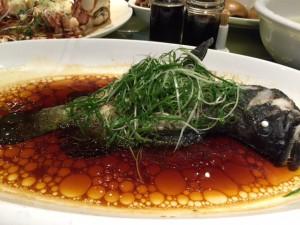 福州石斑魚